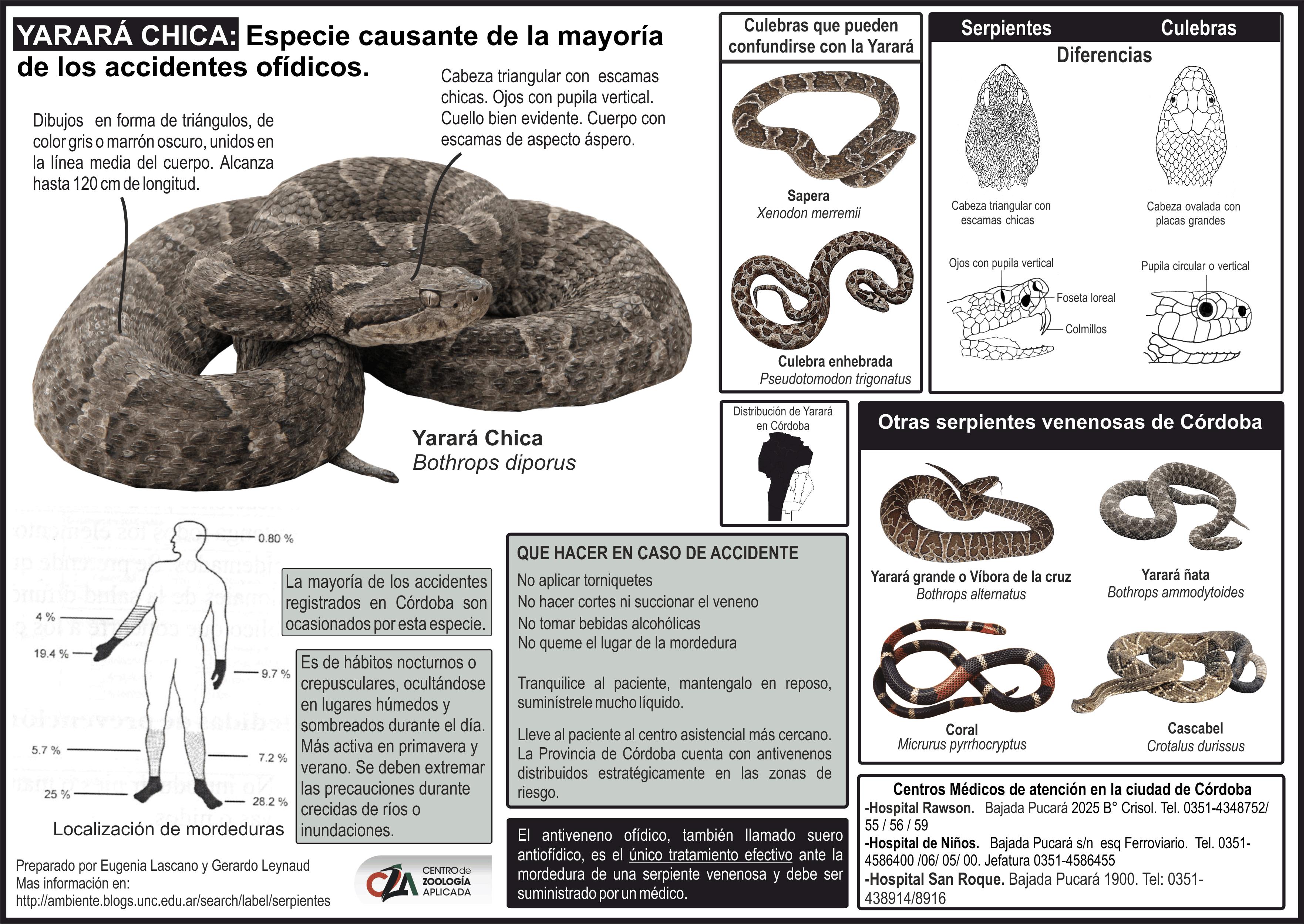 ofidios-gacetilla-2
